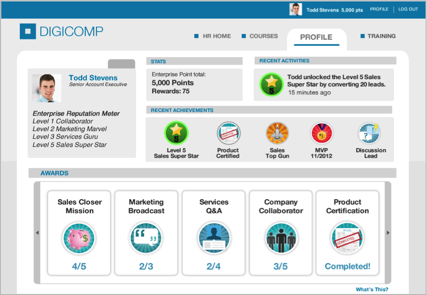 Badgeville gamification profile